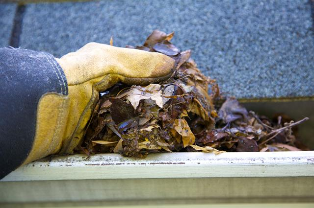 home insurance - keep your gutters clean